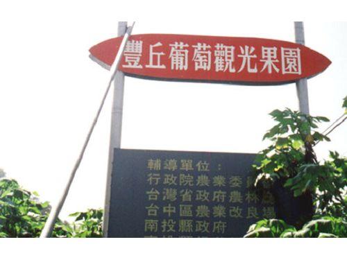 里報.tw-豐丘葡萄觀光果園