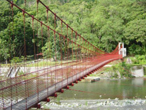 里報.tw-觀林吊橋