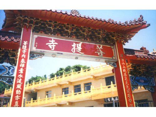 里報.tw-菩提寺