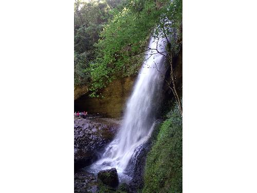 里報.tw-杉林溪森林生態渡假園區