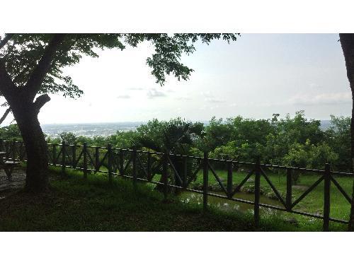 里報.tw-大崗山風景區