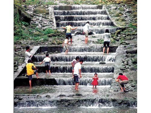 里報.tw-溪頭森林遊樂區