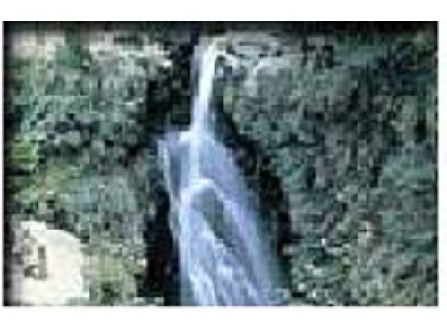 里報.tw-滿月圓國家森林遊樂區