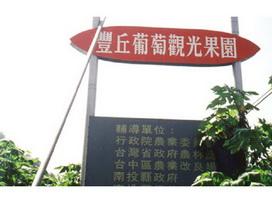 豐丘葡萄觀光果園