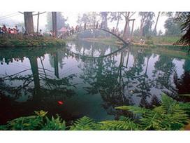 溪頭國家森林遊樂區