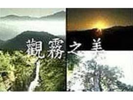 觀霧國家森林遊樂區