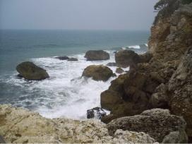西子灣大自然