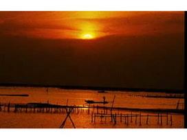 外傘頂洲日出