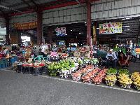 玉井區青果集貨市場