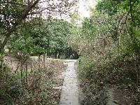 大崗山盤龍峽谷步道