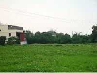 大溪風景區農牧地