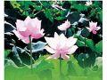 白河蓮花節文化活動(6月)