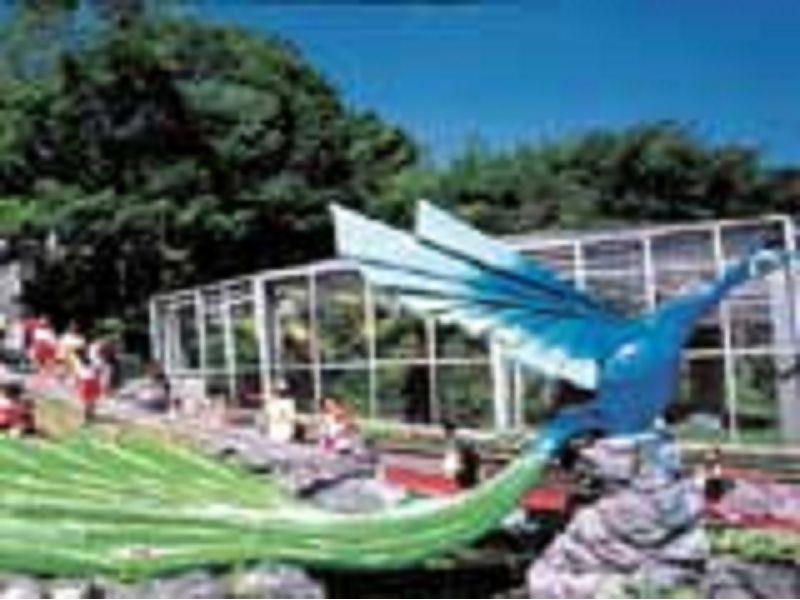 里報.tw-鳯凰谷鳥園