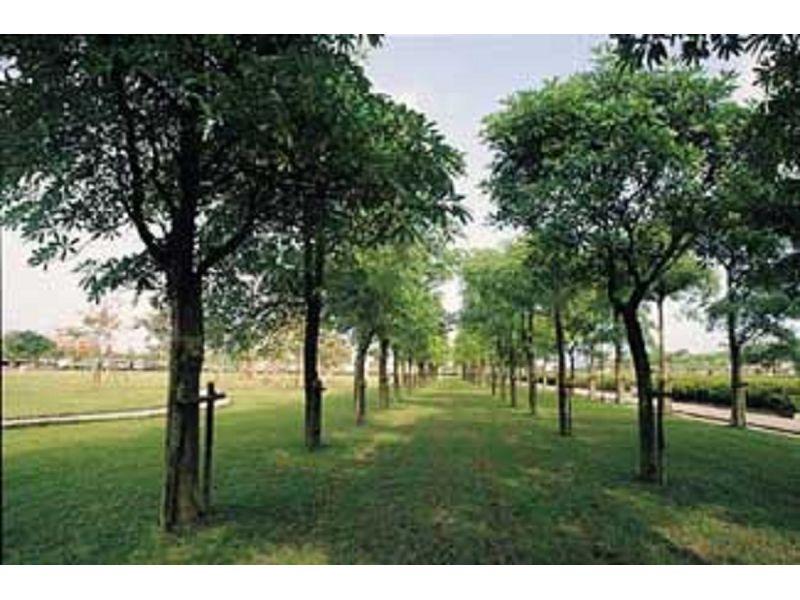 里報.tw-羅東北城運動公園