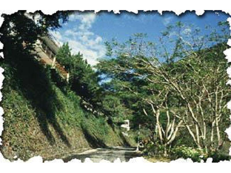 里報.tw-綠水合流步道