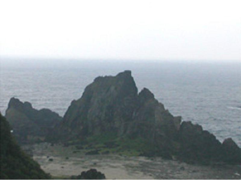 里報.tw-柚子湖