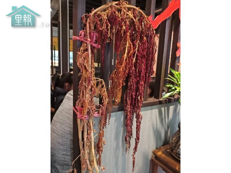 里報.tw-七里坡紅藜養生料理