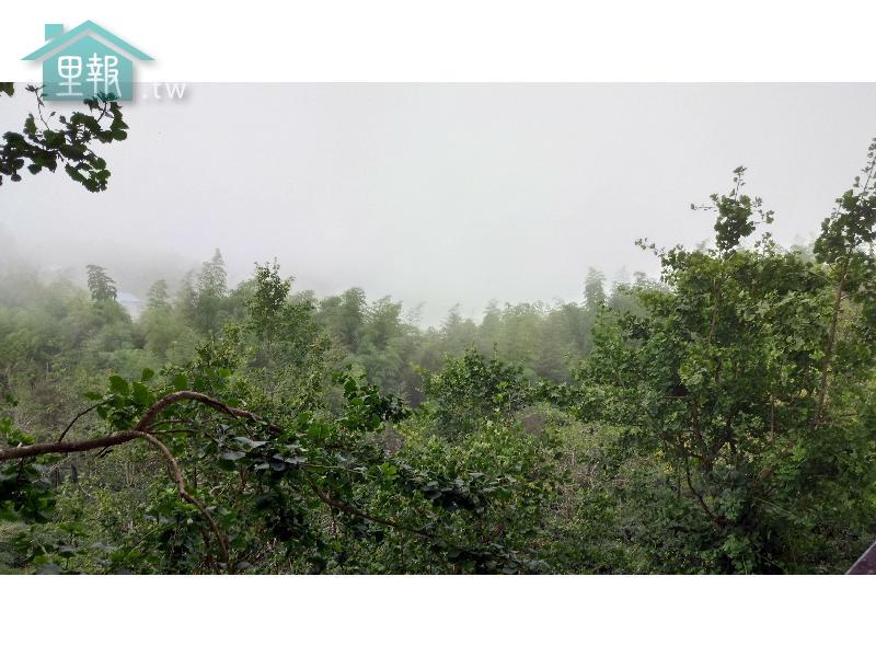 里報.tw-武岫農圃品莒館
