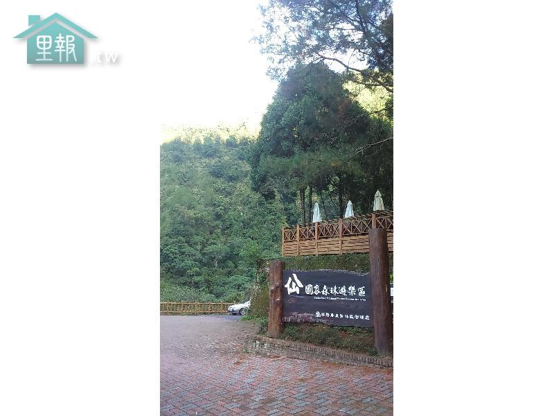 里報.tw-八仙山國家森林遊樂區
