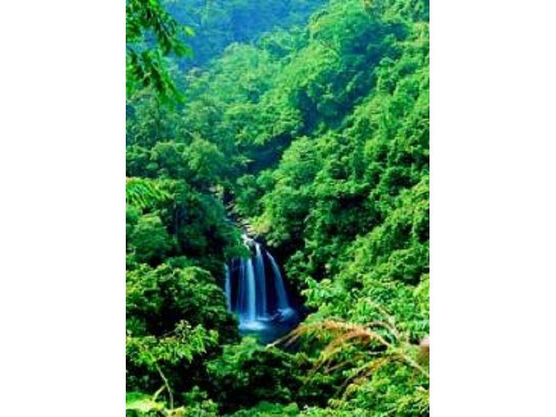 里報.tw-八仙瀑布