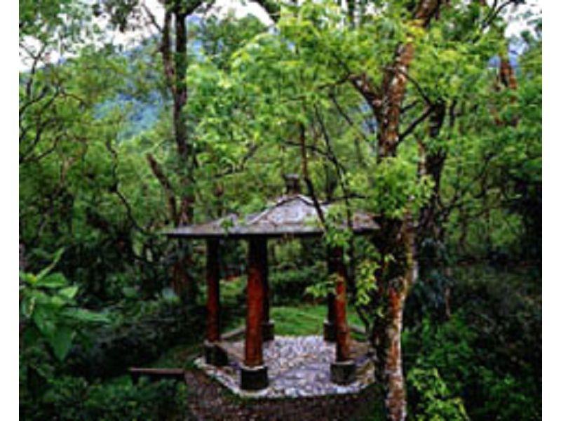 里報.tw-富源國家森林遊樂區