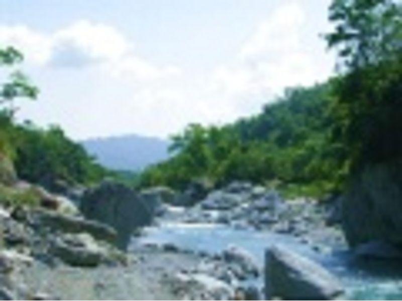 里報.tw-池南國家森林遊樂區