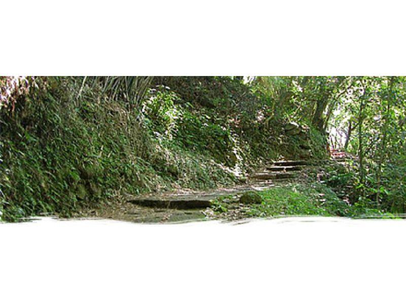 里報.tw-向天池步道