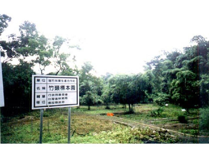 里報.tw-竹類標本園