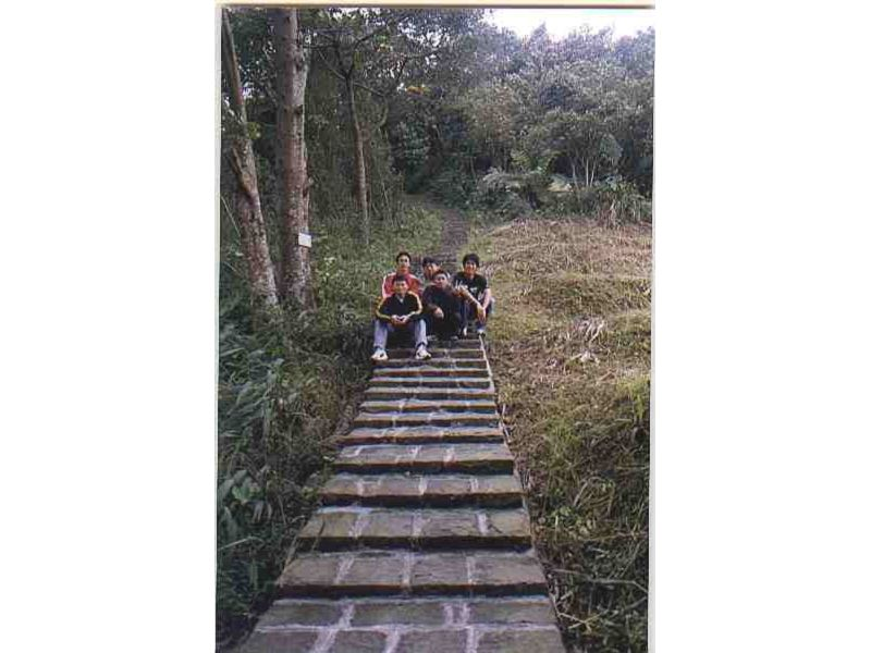 里報.tw-萬瑞森林遊樂區