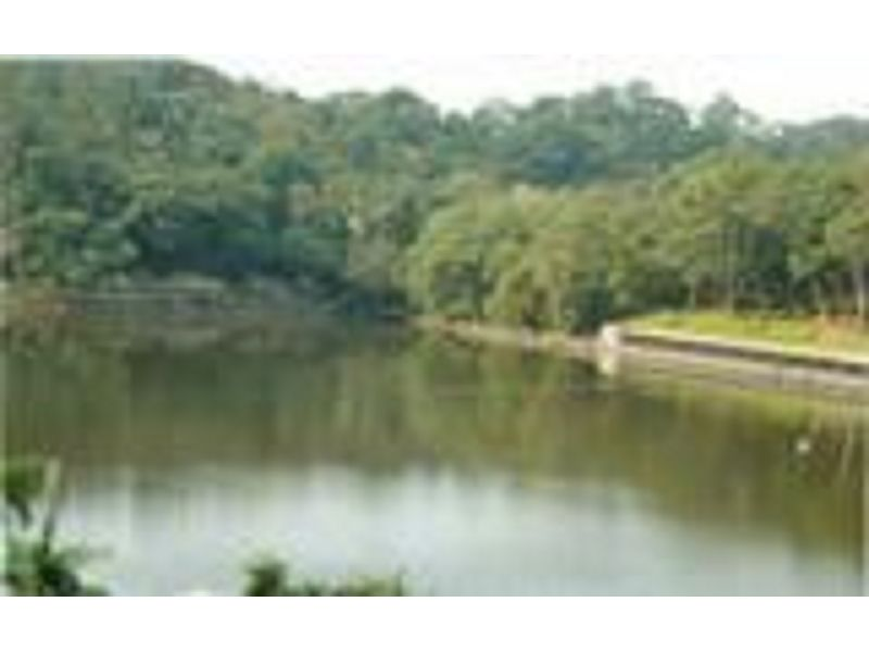里報.tw-慈湖