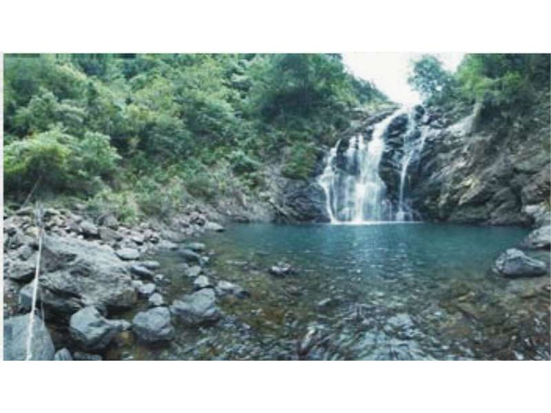 里報.tw-雙流國家森林遊樂區