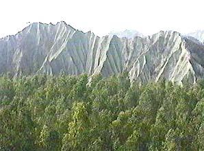 里報.tw-燕巢月世界風景區